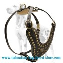 Exclusively Hand-decorated Leather Dog Harness for Dalmatian breed