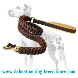 Stunning Look Dalmatian Dog Leash