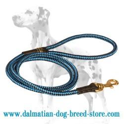 Cord-Shaped Dalmatian Dog Leash