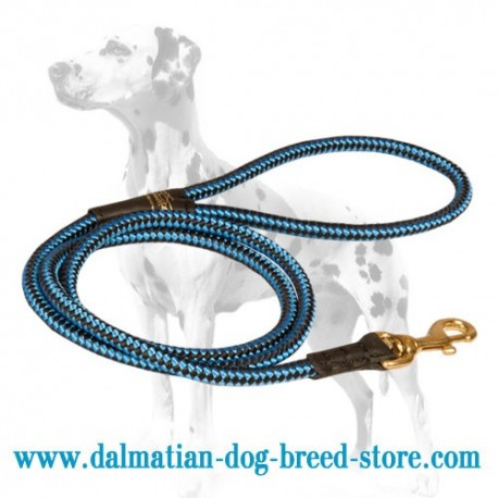 Cord-Shaped Dalmatian Dog Leash
