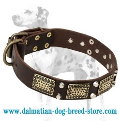Extra Class Quality Dalmatian Leather Dog Collar