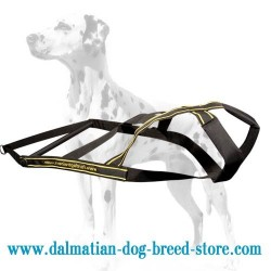 Easy and Comfy Pulling Nylon Dog Harness for Dalmatian breed