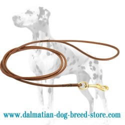 Ultra-Thin Dalmatian Dog Leash