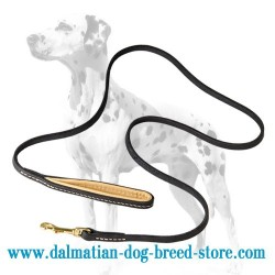 Leather Dalmatian Dog Leash with Padded Handle