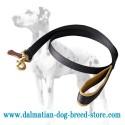 'No Rubbing' Dalmatian Dog Leash with Soft Handle