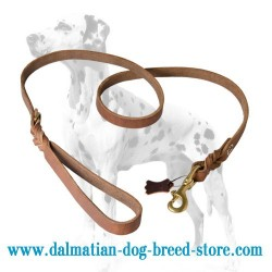 Amazing Design Dalmatian Dog Leash