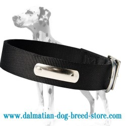 2 Ply Nylon Dalmatian Dog Collar with name tag