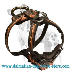 Beautifully Hand-painted Dog Harness for Dalmatian