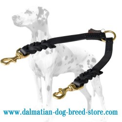 Braided Design Dalmatian Dog Coupler