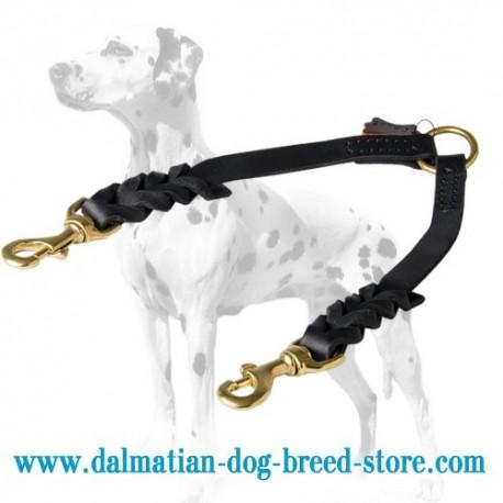 Braided Design Dalmatian Dog Coupler