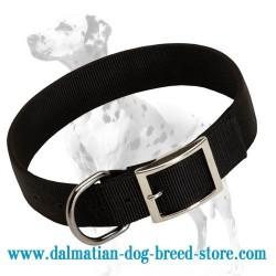 Everyday classic black nylon collar for Dalmatian