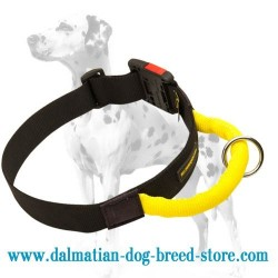 Multipurpose off-leash nylon collar for Dalmatian