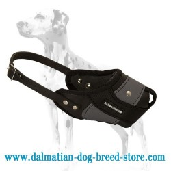 Dalmatian New Agitation Training Dog Muzzle
