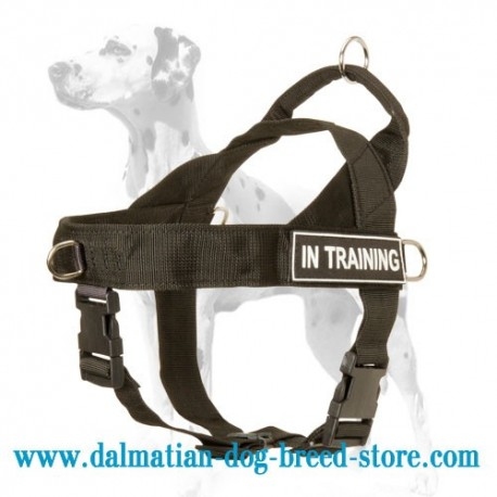 Nylon Dalmatian Harness for Training, Tracking and Walking