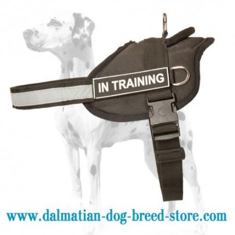 Multipurpose Nylon Dalmatian Harness with Reflective Trim for Dalmatian