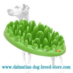 "Dalmatian ""Green Grassy Dish"" Pet Feeder for Small Dogs"