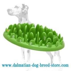 Dalmatian Green Lawn Interactive Slow Dog Feeder