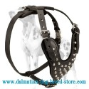 Dalmatian Wide Straps Leather Dog Harness With Silver-Color Pyramids