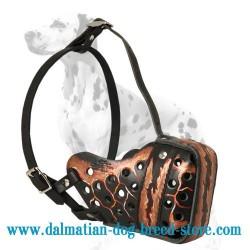 'Magma Style' Dalmatian Dog Muzzle