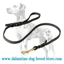 Dalmatian Leather Dog Leash with Short Braids