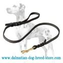 Dalmatian Leather Dog Leash with Short Braids