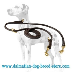 Multimode English Leather Dalmatian Dog Leash