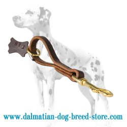 'Pull Grab Tab' Dalmatian Dog Leash
