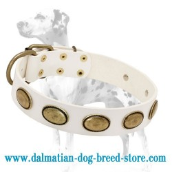 'Vintage Gem' Dalmatian Dog Collar