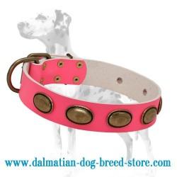 'Eccentric Style' Dalmatian Dog Collar