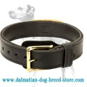 Wear-and-tear resistant 2 ply leather agitation dog collar with handle for Dalmatian