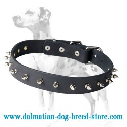 'Bow-Wow' Dalmatian Leather Dog Collar
