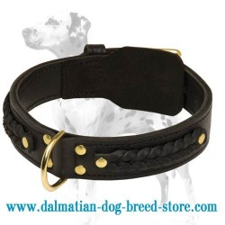 Classy Leather Dog Collar decorated with braids for Dalmatian collar