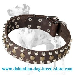 'Bump & Bits' Dalmatian Dog Collar