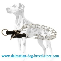 Dalmatian Dog Chrome Plated Solid Pinch Collar