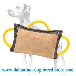 Dalmatian French Linen Dog Bite Pad with Leather Area