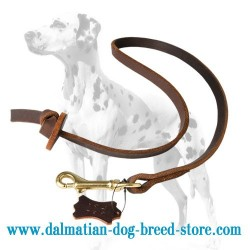 Extra Strong Dalmatian Dog Leash with Leather Stopper