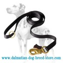 Extra Durable Dalmatian Dog Leash of Nylon