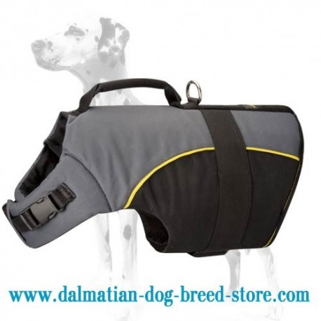 Dalmatian Must-Have Harness Perfect for Winter and Dog Rehabilitation