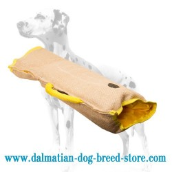 Convenient Dalmatian Dog Training Sleeve of Jute Material