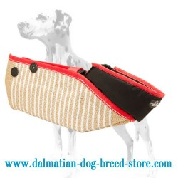 Strong & Safe Dalmatian Dog Training Sleeve