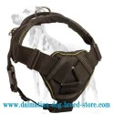 Fine nylon dog harness for pulling, tracking and training designed to fit Dalmatian breed