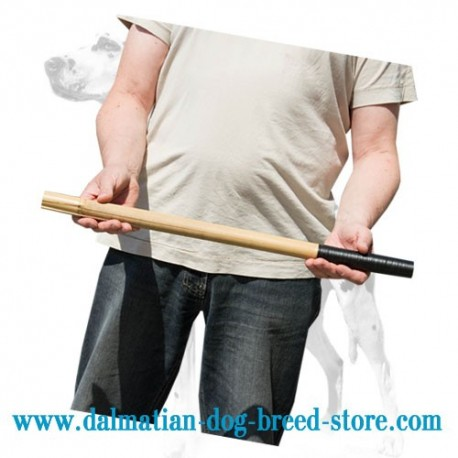 Dalmatian Training Bamboo Stick