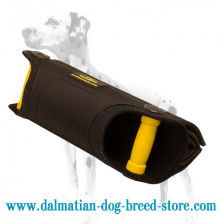 Young Dalmatian Training Dog Bite Builder with Adjustable Bite Angle