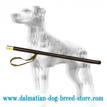 Dalmatian Sport Training Leather Covered Stick