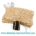 Pocket-Sized Dalmatian Dog Bite Tug for Basic Training
