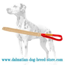 Dog-Safe Dalmatian Puppy Training Bite Tug