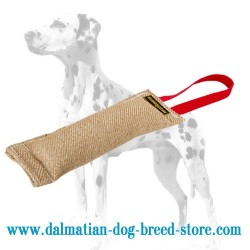 Dalmatian Puppy Training Bite Tug Made of Jute