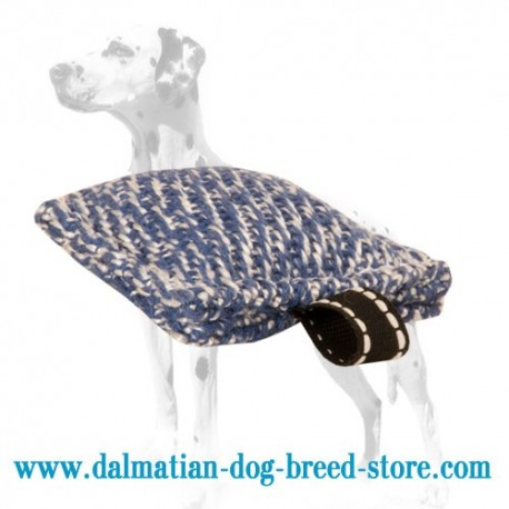 Tiny-Sized Dalmatian Training Dog Bite Tug of French Linen