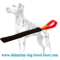 Dalmatian Puppy Bite Training Tug of French Linen