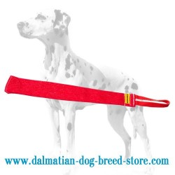 Dalmatian Dog Bite Rag of French Linen for Sufficient Training